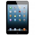 Apple iPad mini with Wi-Fi 64GB - Black & Slate - B