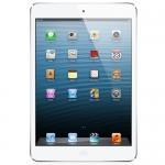 Apple iPad mini with Wi-Fi 32GB - White & Silver - B