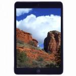 Apple iPad mini with Wi-Fi 16GB - Black & Slate - B